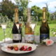 Sweet treats and Rosés at Anthonij Rupert Wyne
