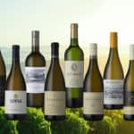 Announcing the Top 10 Sauvignon Blanc SA Wines 2020